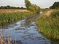 Ox Pasture Drain, where 3 parishes meet - geograph.org.uk - 45515.jpg