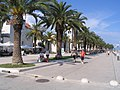 Pálmasor - Trogir, Horvátország - panoramio.jpg