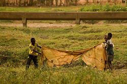Pêche rustique à Ouagadougou.jpg