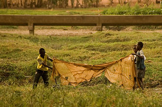Child labour in Africa - Fishing is another major employer of child labour in Africa, such as above in Burkina Faso.