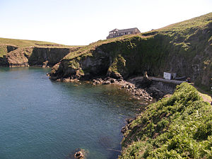 Wildlife Trust of South and West Wales - The whole of the Isle of Skomer, Pembrokeshire, is a Wildlife Trust of South and West Wales reserve.