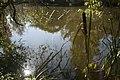 PM 113100 B Oudenaarde.jpg