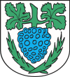 Coat of arms of Jastrowie