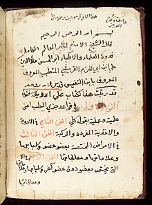 Page from an Arabic Text Wellcome L0033646.jpg