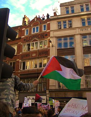 Palestinian nationalism - A British student waves the Palestinian flag in solidarity with the Palestinian cause on an anti-government march through central London, 09 November 2011.