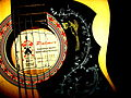 Palmer PS38N three quarter size Folk Guitar close-up (by amberrgerr).jpg
