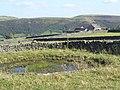 Paradise Farm - geograph.org.uk - 1485325.jpg