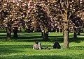 Parc de Sceaux 2013 002.jpg