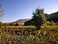 Paseo por el Henares (1799938852).jpg