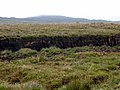 Peat cuttings, Owenwee Bog - geograph.org.uk - 1401920.jpg