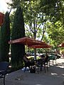 Peet's Coffee & Tea Umbrellas, Dublin, CA 1 2016-09-26.jpg