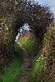 Pembrokeshire coast, IMG 0327.jpg - panoramio.jpg