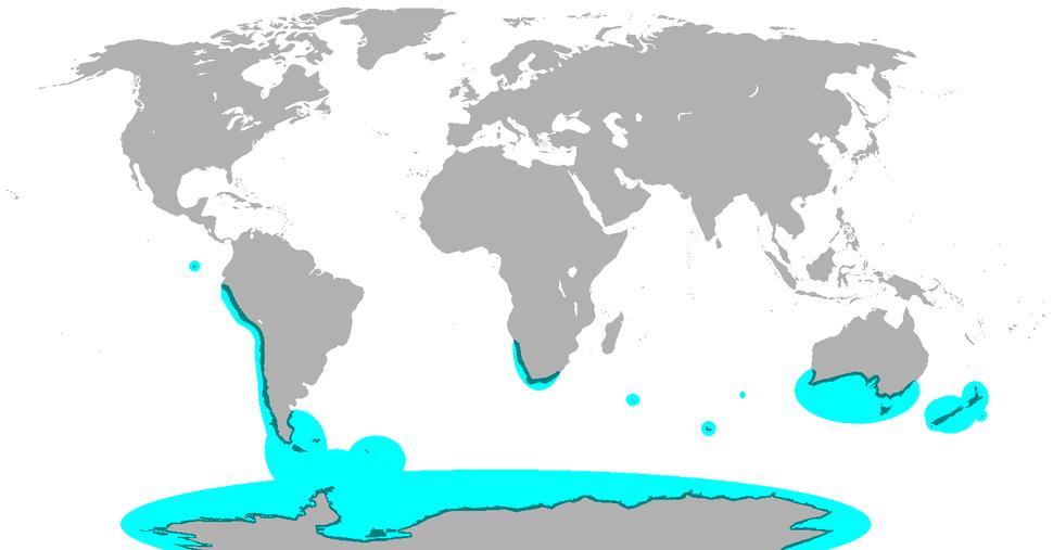 Penguin range