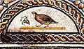 Perdrix picorant une grappe de raisin dernier quart du IIe siècle détail de la Mosaïque des cratères et oiseaux Vienne..jpg