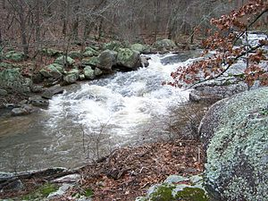 English: Pickle Creek at Hawn State Park in St...