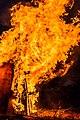 PikiWiki Israel 73881 fire.jpg