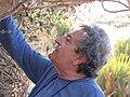PikiWiki Israel 8796 Tourism in Israel.jpg