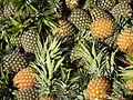 Pineapples for sale in Bolgatanga, Upper East Region, Ghana.JPG