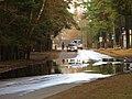 Pludi druvciema 2011 - panoramio (48).jpg