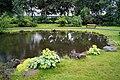 Pond, flowers and grass at Reykjavík botanical garden.jpg