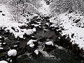 Potok prekriven snijegom.jpg