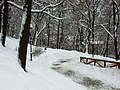 Praha, Smíchov, Kinského zahrada, sníh II.JPG
