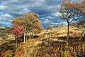 Prairie Grass Trail (5) (15451576299).jpg