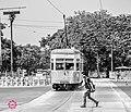 Pride of Kolkata - TRAM Pink022.jpg