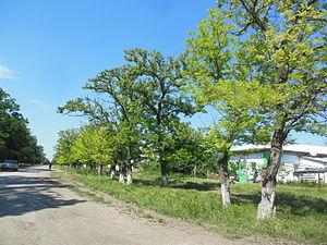 украина крым советский район с пруды знакомство