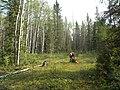Quarry of the Ancestors Sep 2009 083 (5643882962).jpg