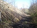 Quarry spoil tip at Nash Quarry - geograph.org.uk - 901616.jpg