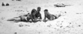 Queensland State Archives 1142 Beach scene Maroochydore January 1931.png