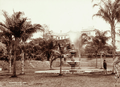 Queensland State Archives 2199 Queensland Club from Botanic Gardens Brisbane 1897.png