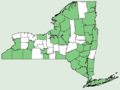 Quercus rubra NY-dist-map.png