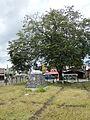 QuezonAvenue,SantaCruzjf9729 35.JPG