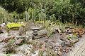 Quitos botaniska trädgård-IMG 8806.JPG