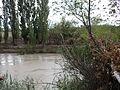 Río Chubut con turbiedad, febrero 2016 05.JPG