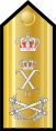 RHN-Adm-of-the-Fleet-shoulder.SVG