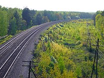 Railroads in spring forests.jpg