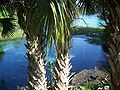 Rainbow Springs State Park source02.jpg