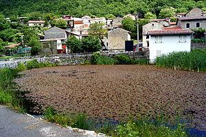 Rakitovec, Koper - Image: Rakitovec, Koper (8894133646)
