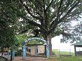 Rangamati 10.jpg