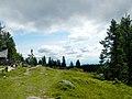 Reinischkogel Gipfelwiese4.jpg