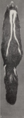 Revision of the skunks of the genus Chincha (1901) pl. 3 M. m. notata.png