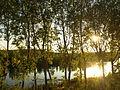Rio Ebro, a su paso por Haro, La Rioja.JPG
