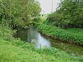 River Mease - geograph.org.uk - 428104.jpg