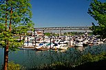 Riverplace Marina (Multnomah County, Oregon scenic images) (mulDA0054a).jpg