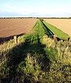 Riverside track to Thorney Crofts - geograph.org.uk - 985819.jpg