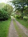Road to Bentyhowe - geograph.org.uk - 541197.jpg
