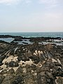 Rock Formations at the Gyeongju Coast Line.jpg